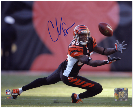 New     Chad Johnson Cincinnati Bengals Autographed 8x10 ...